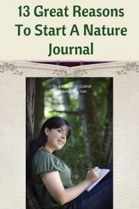 start a nature journal