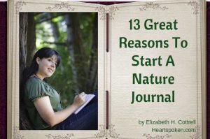 13 Great Reasons To Start A Nature Journal