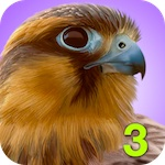 3 Great Apps For Nature Lovers