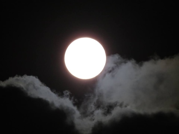 Over The Moon: Our Amazing Night Light