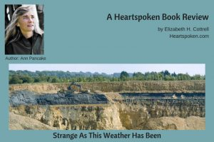 Strange As This Weather Has Been - book review