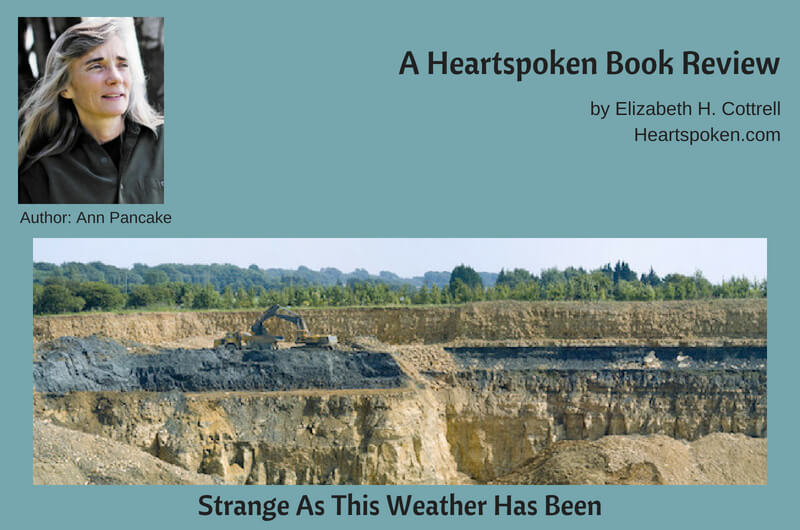 Strip mining - book review