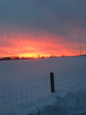 WinterSunset2