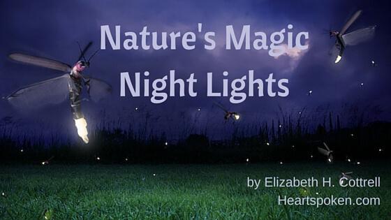 Nature's Magic Night Lights