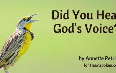 Did You Hear God
