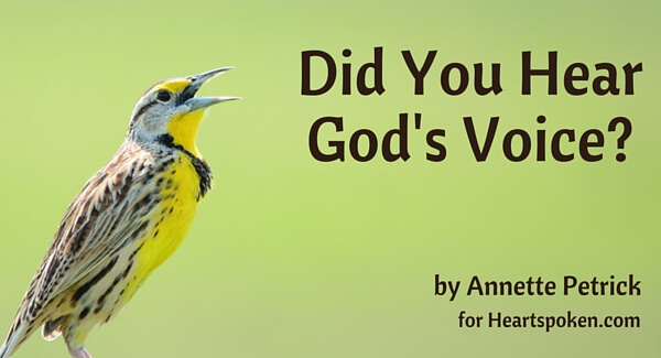 Did You Hear God's Voice?