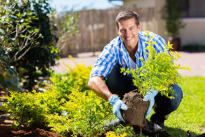 man with gardening gloves and potted plant