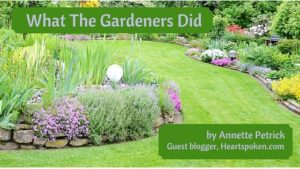 beautifully landscaped yard with post title and author
