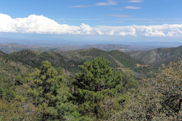 The Black Range in southern New Mexico  and the high desert of Santa Fe seemed like worlds away from the Shenandoah Valley.