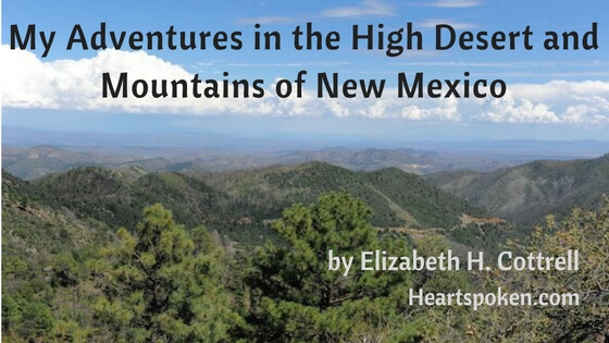 Adventures In The High Desert And Mountains Of New Mexico