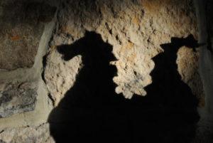 Shadow of dragon on wall