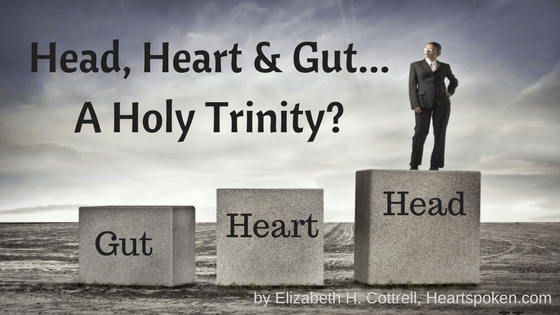 Head, Heart, and Gut: A Holy Trinity?