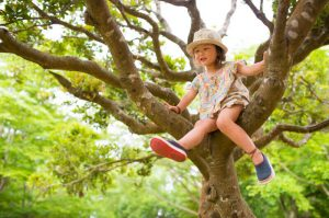 little girl up in a tree