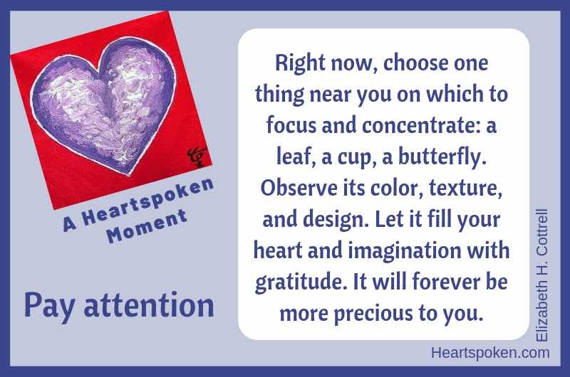 Heartspoken Moment: Pay Attention
