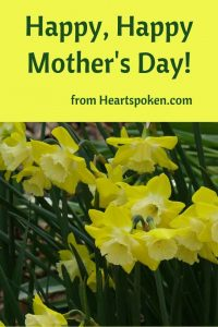 Daffodils - Happy Mother's Day