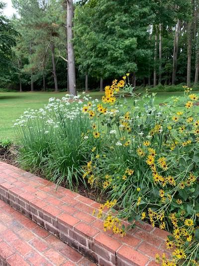 September blooms at Riverwood