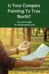 Is your compass pointing to true north?